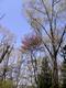 2010042503.jpg