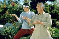 Karate_Kid2.jpg